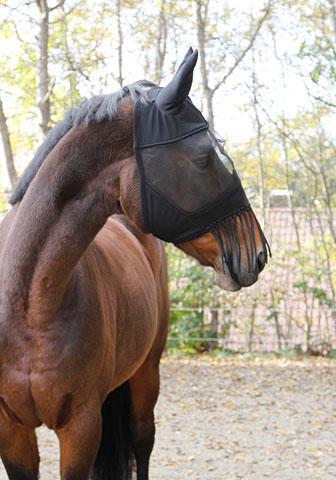 Fliegenschutzmaske Pony EH321267