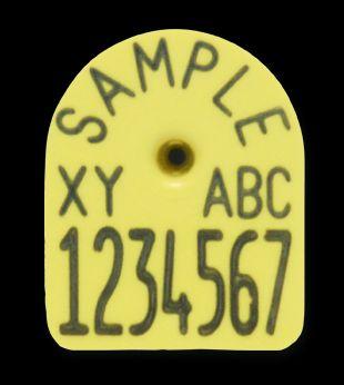 Multi-Flex-Ohrmarken, für Ferkel, 3 x 2,7 cm, D6200 ROT