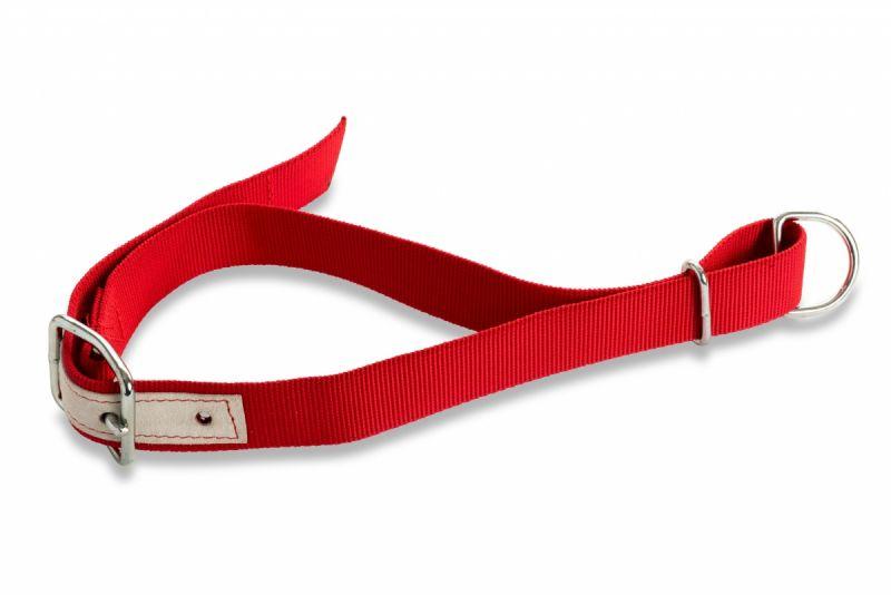 Halsanbindungen und Zubehör-Halsgurte 120 cm H 100 ROT